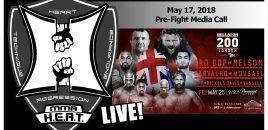 Bellator 200: Mirko Crop Cop / Roy Nelson / Rafael Carvalho / Gegard Mousasi Pre-Fight Media Call